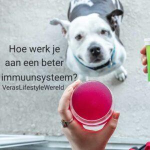 Hoe werk je aan een beter immuunsysteem?