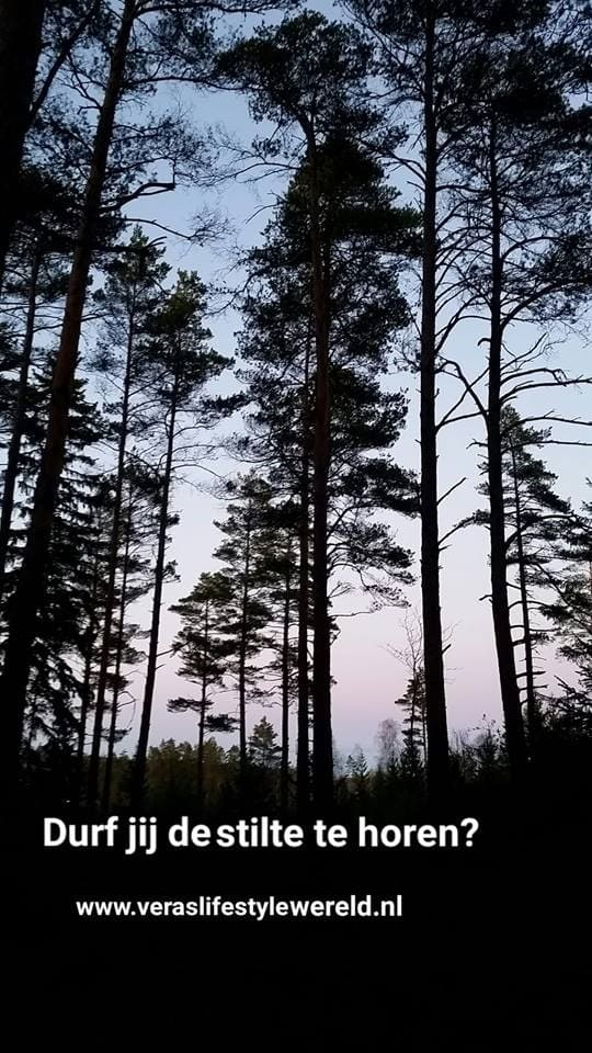 Wil jij de stilte horen? Wil jij vrijheid ervaren? Durf jij stilte te ervaren? Durf die stap te nemen en zoek af en toe je rust op. En durf echt alleen te zijn. Geef je lijf rust.